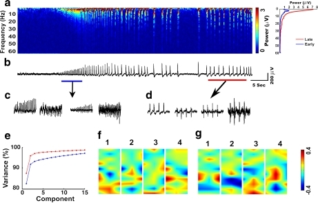 Power spectrum and principal component analysis of network oscillations. a Time–frequency spectrogram based on Fourier transform for the entire period of activity from one recording channel. The plot on the right shows the averaged power spectrum during the early and late phases of the oscillations. b LFP recording that was used to compute spectrogram in a. Blue and red lines indicate the periods selected for principal component analysis (PCA), as initial and later phases correspondingly. High KCl was applied at the start of the recording shown. c, d Projections of the 32-channel data sets to the first four PCA components. e The cumulative increase of variance. Blue and red lines indicate initial and later phases of the oscillations. f, g Spatial distribution of the PCA weights for the first four components for initial (f) and later (g) phases of the oscillations. Each color-scaled image indicates the interpolated PCA weights on the electrode grid