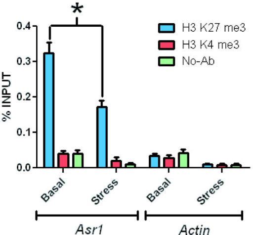 Association of Asr1 with a repressive histone epigenetic mark. ChIP was performed using Dynabeads protein A (Invitrogen) and anti-H3K4me3 or anti-H3K27me3 antibodies (Abcam). Quantitative Real-Time PCR was carried out as indicated in the Methods section. Comparison between non-stress vs. stress yielded p < 0.05. Actin was included as a housekeeping gene control.