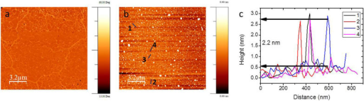 (a) Phase mode AFM image of the corresponding red box in Fig. 3(c). (b) Topography mode AFM image of the same area. (c) Height profiles over dark blue lines shown in (b).