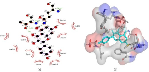 2D (a) and 3D (b) models of naringenin (1) in the binding site of PDE1. Green lines indicate hydrogen bonds and the half-moon the hydrophobic interactions.