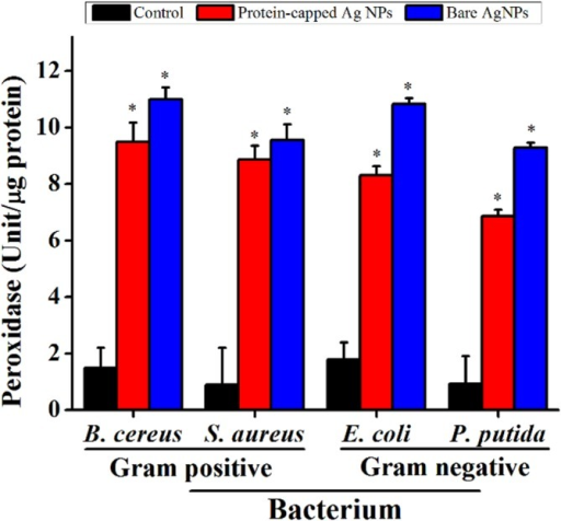 Levels of peroxidase in untreated and treated bacterial cells.The data are expressed as mean ± standard error of three independent experiments (p<0.05).