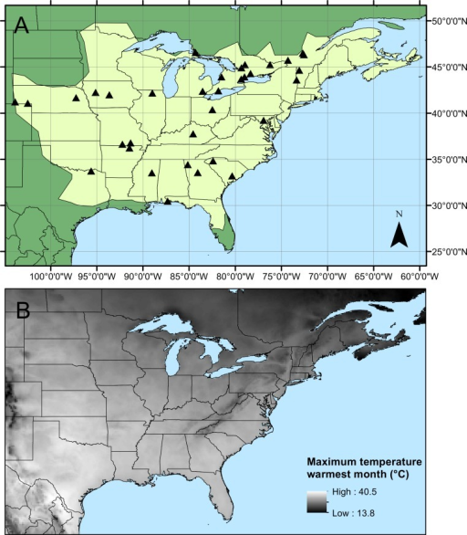 Calopteryx maculata sampling sites.(A) The geographic distribution of Calopteryx maculata (light shaded area) in relation to the 34 locations at which specimens were collected. (B) Shows the geographical variation in the maximum temperature of the warmest month across the region.