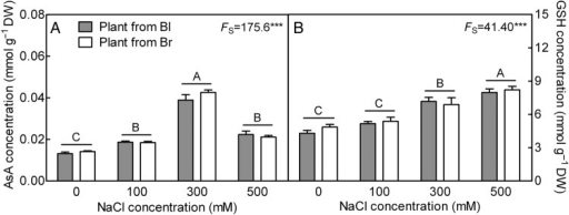 Changes of non-enzymatic antioxidant concentration in leaves during long-term NaCl treatment. (A) Ascorbic acid and (B) GSH. F-values are given when significance levels are reached (S, salt; ***P< 0.001). Bars with different uppercase letters indicate significant differences (P< 0.05) according to Tukey's test. Values are means ± SE of three replicates. Bl, black seed; Br, brown seed.
