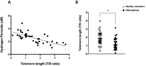 Correlation between the concentration of hydrogen peroxide and telomere length in OSA patients. A significant inverse correlation was observed between the concentration of hydrogen peroxide and the telomere length of 43 OSA patients (R2=0.490) (A) and mean telomere length in healthy volunteers (N = 34) and OSA patients (N = 43) (B). Graphs show mean values. White dot: telomere length of healthy volunteers; black dot: telomere length of OSA patients (*p < .05 comparing healthy volunteers and OSA patients).