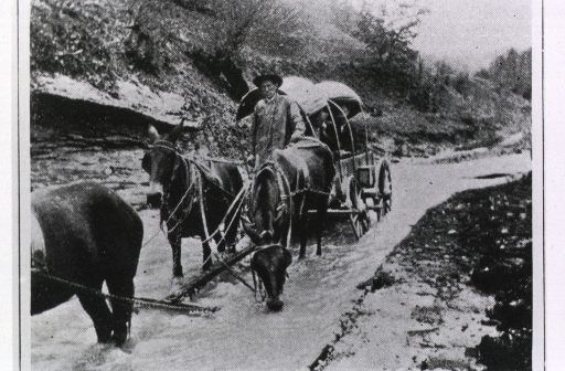 <p>A covered wagon drawn by a team of mules is using a creek bed for a road as it carries trachoma patients to a clinic in Lexington.</p>