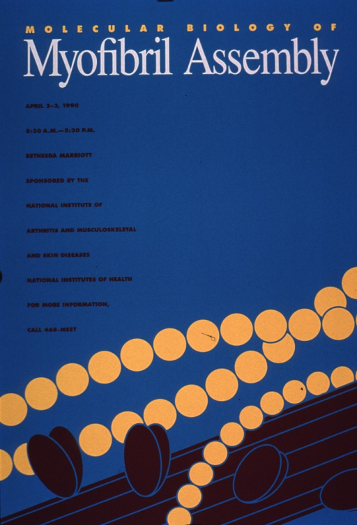 <p>Predominantly turquoise poster with multicolor lettering announcing a meeting held Apr. 1990.  Title at top of poster.  Meeting details and sponsor listed on left side of poster.  Visual image is an abstract design somewhat suggestive of myofibrils.</p>