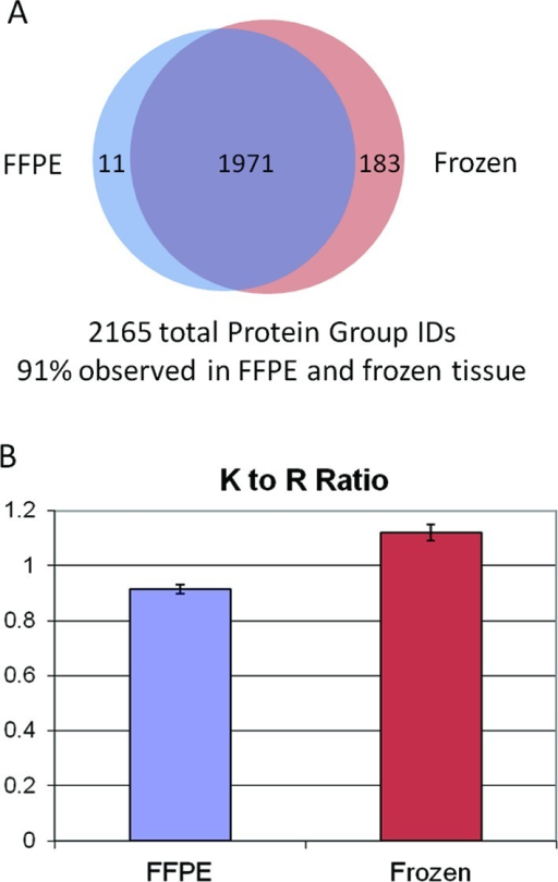 Characteristics of the shotgun proteomic data set. Highqualitativeconcordance was observed for proteins identified in both FFPE andfrozen tissue digests. Peptides observed in FFPE tissue were biasedagainst lysine C-terminal peptides, indicated by a lower lysine toarginine peptide ratio. Error bars represent standard deviation from4 IEF replicates.