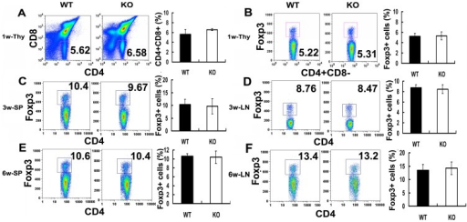 PGRN deficiency does not alter the generation of CD4+CD25+Foxp3+ T cells in vivo.Flow cytometric evaluation of CD4+CD25+Foxp3+ T cells in one-, three-, and six-week-old wild type (WT) and PGRN-deficient mice. (A) The percentage of CD4+ and CD8+ T cells in thymus from one-week-old C57BL/6 mice and PGRN-deficient mice. (B) The percentage of CD4+CD25+Foxp3+ cells in thymus from one-week-old C57BL/6 mice and PGRN-deficient mice. (C) The proportion of CD4+CD25+Foxp3+ cells in spleen from three-week-old C57BL/6 mice and PGRN-deficient mice. (D) CD4+CD25+Foxp3+ cells in lymph nodes from three-week-old C57BL/6 mice and PGRN-deficient mice. (E) The proportion of CD4+CD25+Foxp3+ cells in spleen from six-week-old C57BL/6 mice and PGRN-deficient mice. (F) CD4+CD25+Foxp3+ cells in lymph nodes from six-week-old C57BL/6 mice and PGRN-deficient mice. All data was representative of three mice per group and indicated as mean ± SEM.
