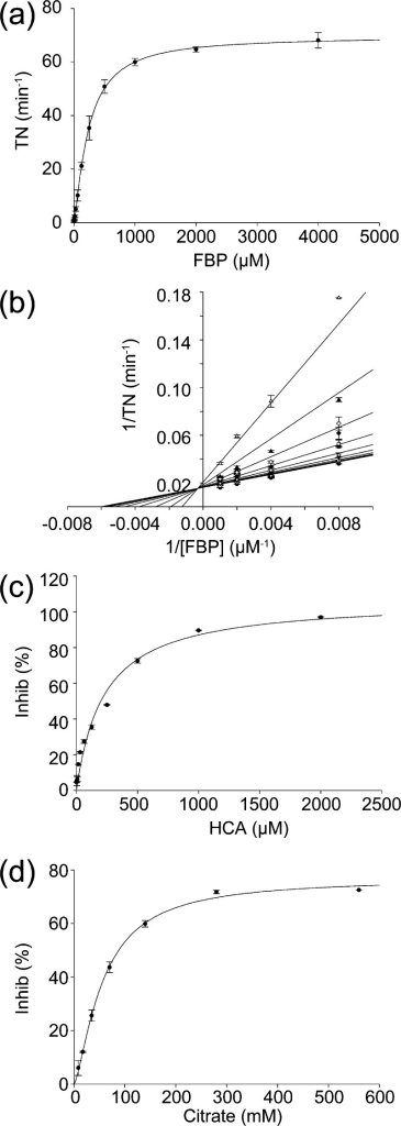 SaFBAkinetic studies. (a) Plot of turnover number (TN) of FBPby SaFBA as the concentration of FBP was varied from 0 to 5000 μM.(b) Lineweaver–Burke plot of inhibition of SaFBA by HCA. Concentrationsof HCA were (●) 0, (○) 1.95, (▼) 3.91, (▽)7.81, (■) 15.6, (□) 31.3, (⧫) 62.5, (◊)125, (▲) 250, and (△) 500 μM. Data were fit globallyto a pure mixed inhibition model. (c) Plot of inhibition of SaFBAas the HCA concentration was increased from 0 to 2 mM. (d) Plot ofinhibition of SaFBA as the citrate concentration was increased from0 to 560 mM. All plots were fit to the Michaelis–Menten equation.