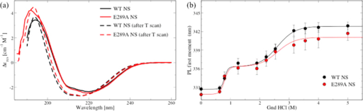 Thermal and chemical stability.(a) Far-UV CD spectra of WT NS (black lines) and E289A NS (red lines) at 25 °C before (solid lines) and after the temperature ramp from 25 to 90 °C at 1 °C/min. (b) First moment of emission spectra upon excitation at 275 nm as a function of Gnd HCl concentration: WT NS (black circles) and E289A NS (red circles). The points are averages over triplicate experiments. Solid lines are sigmoidal fit.