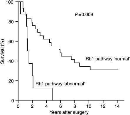 Survival curves for cases with loss of both wild-type alleles of any TSG coding for a component of the Rb1 pathway (CDKN2A, CDKN2B, RB1) or amplification of CDK4, that is, Rb1 pathway classified as 'abnormal' (n=8; median survival 1.4 years) and cases coded as 'normal' (n=29; median survival 5.8 years), respectively. Univariate analysis: P=0.009.