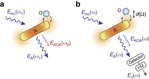 Schematics of a surface-enhanced light scattering process.(a) Inelastic scattering process (ω1≠ω2) from an object (O) in the presence of a metal nanostructure that acts as an optical antenna (A). (b) Elastic scattering process (ω1=ω2=ω). Einc(ω) denotes the incident field, EA(ω) is the field directly radiated by the antenna, and EAOA(ω) is the field radiated by the object via the antenna. To select EAOA, the antenna–object distance d is modulated at frequency Ω, and the detector signal is demodulated at the higher harmonic frequency nΩ.