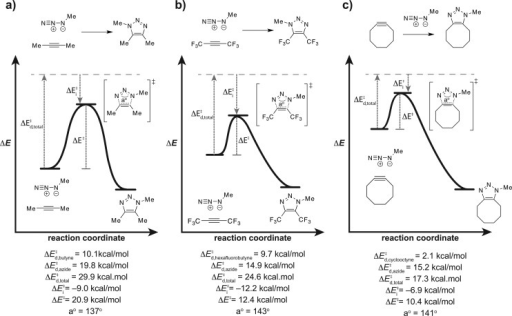 Distortion/interactionmodel. (a) Activation energy (ΔE⧧) for the reaction between 2-butyneand methyl azide is the sum of distortion energy (ΔE⧧d) and interaction energy (ΔE⧧i). (b) Perfluorination ofthe alkyne reduces ΔE⧧ ofthe reaction by increasing the magnitude of stabilizing interactionsin the transition state and decreasing distortion energy. (c) Constrainingthe alkyne into an eight-membered ring reduces ΔE⧧ by decreasing the distortion energy requiredto bend the starting materials into their preferred transition stateconformations. For a–c, calculated values are electronic energies,the potential energy of the molecule on a vibrationless potentialenergy surface. As all reactions are represented on separate energydiagrams, the depictions are only intended to facilitate comparisonsof ΔE⧧, ΔE⧧d, and ΔE⧧i values and not the overall energies ofstarting materials or triazole products. Calculations were performedusing B3LYP/6-31G(d). See Supporting Information for details.