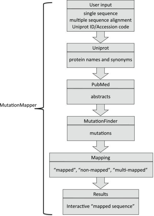 Schematic flow chart of the process used in MutationMap | Open-i on