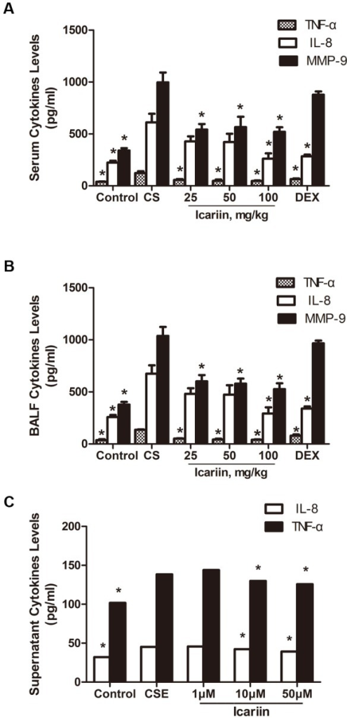 Icariin suppresses CS-induced TNF-α, IL-8 and MMP-9 levels in vivo and in vitro.TNF-α, IL-8 and MMP-9 levels in serum (A), BALF (B) and culture supernatant (C) were measured by ELISA. Data are mean ± SEM (n = 4–5). * P<0.05 vs. CS-exposed mice or CSE-exposed A549 cells. CS = cigarette smoke; CSE = cigarette smoke extract; DEX =  dexamethasone; BALF  = bronchoalveolar lavage.