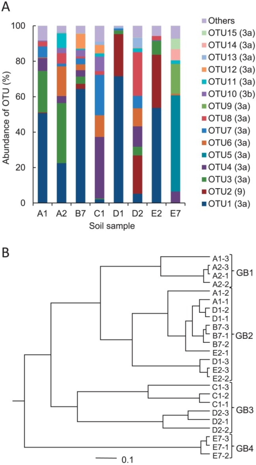 Relative abundance of AOB amoA OTUs (A) and the UPGMA cluster tree (B). The relative abundances in panel A show the average of three replicates. The OTU numbers are followed by the Nitrosospira cluster numbers, which are given in parentheses. The cluster tree in panel B was constructed using the average of three replicates.