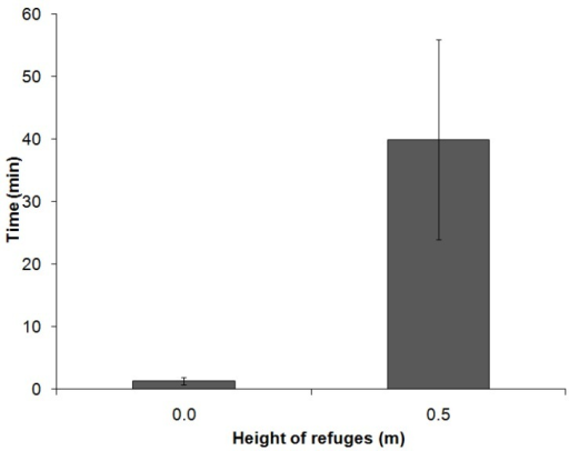 Lengths of stay of the animals within the refuges at heights of 0.0 m (n = 20) and 0.5 m (n = 7) (*p = 0.004, Mann-Whitney).