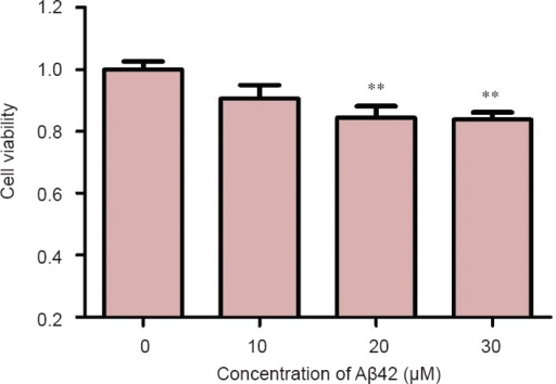 Toxic effect of amyloid-beta(Aβ)42 with different concentrations on the viability of PC12 cells as measured by MTT assay.Data are presented as the mean ± SD. Results were calculated from six independent experiments. Data were analyzed by one-way analysis of variance combined with the least significant difference test. **P < 0.01, vs. control group (0).