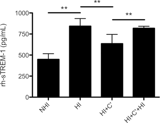 Complement interferes in sTREM-1 ELISA.NHI and HI sera were 1:4 diluted and 4 U of reconstituted guinea pig complement (C') was added to 240 μL-diluted sera. HI serum after addition of C' was again heat-inactivated at 56 °C for 30 min to inactivate the complement. 2,000 pg/mL rh-sTREM-1 was added to each preparation and twofold serially dilution was performed. Shown are the results of extrapolated rh-sTREM-1 at 1,000 pg/mL tested by Radsak sTREM-1 ELISA. Mean and SD for three independent experiments each conducted in duplicates are shown. Statistical significance for indicated samples was calculated by two-tailed Wilcoxon matched-pairs test followed by Bonferroni correction for multiple testing. **p < 0.01.