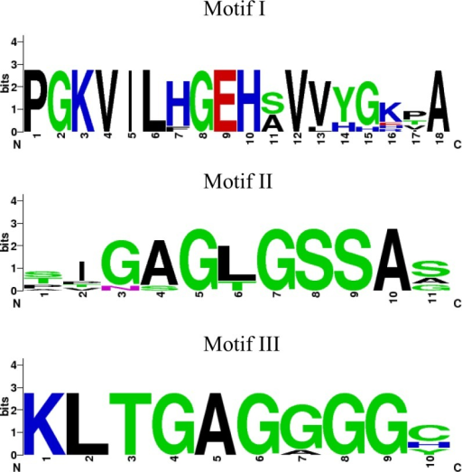 Motifs derived from MVK amino acid sequence alignments display consensus sequences.Sequence logos for motif I, II and II were built using Weblogo [27]. The overall height of the stack indicates the sequence conservation at that position, colors denote the chemical properties of the amino acids. The sequences used are: Aedes aegypti (AAEL006435), Culex quinquefasciatus (EDS42994), Anopheles gambiae (EAA14782), Drosophila melanogaster (AGB93455), Bombyx mori (NP_001093299), Danaus plexippus (EHJ79258), Apis mellifera (XP_006558673), Acyrthosiphon pisum (XP_001942835) and Rattus norvegicus (NP_112325). Colors denote the chemical properties of the amino acids shown in each motif. Polar: G, S, T, Y, C; Neutral: Q; Basic: K, R, H; Acid: D, E; Hydrophobic: A, V, L, I, P, W, F, M.