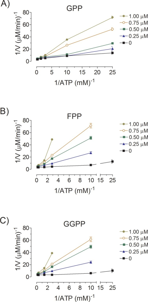 Inhibition of AaMVK activity by GPP (A), FPP (B) and GGPP (C).The rate of MVK activity was measured at different ATP concentrations, without inhibitors and with several fixed concentration of inhibitors (0–1 μM) and MA (200 μM). Secondary plots of slope versus inhibitor concentration indicated that the Ki values for GPP, FPP and GGPP were respectively 0.55 ± 0.28 μM, 0.44 ± 0.2 μM and 0.93 ± 0.19 μM.