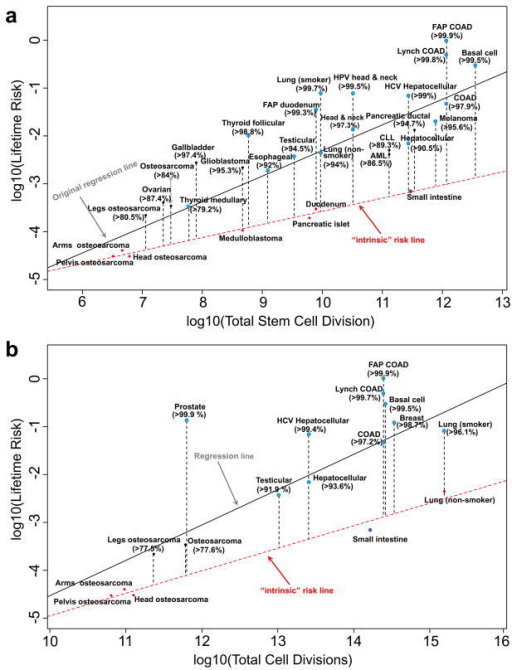 "Estimation of the proportion of lifetime cancer risk that is not due entirely to ""bad luck"" based on: (a). total tissue stem-cell divisions originally reported in Tomasetti and Vogelstein5, and (b). total tissue cell divisionsHere red dots are cancers used to compute the ""intrinsic"" risk linear regression lines (red dashed lines). Blue dots are cancers known to have substantial extrinsic risks from epidemiology studies. The numbers in parentheses are the estimated percentages of cancer risks due to factors other than intrinsic risks."