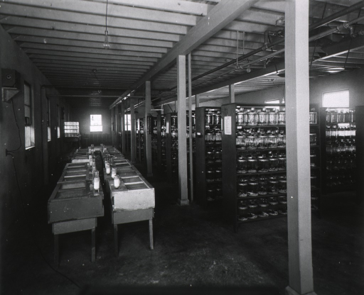 <p>Interior view: two rows of mesh covered cages, shelving with large jars, exposed pipes on the ceiling, light bulbs hanging from the ceiling, a piece of equipment on a shelf plugged into a wall outlet.</p>