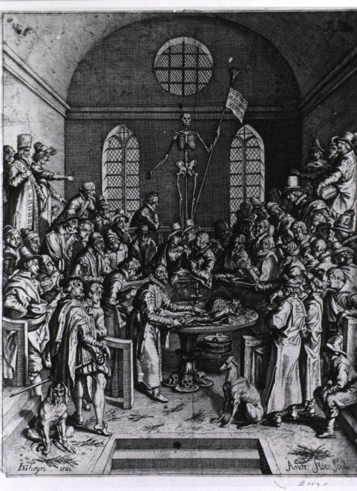 <p>Anatomical theatre, with dissection taking place before group of onlookers.</p>