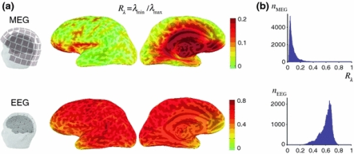 Distribution of Rλ, measuring the relative sensitivity to sources of different orientation and calculated as the ratio of the smallest and largest singular values of the dipole gain matrix for MEG (top) and EEG (bottom). a Spatial maps of Rλ for the left hemisphere are shown in a lateral and medial view of an inflated representation of the cerebral cortex. The curvature of the cortex is indicated by darker (sulci) and lighter (gyri) regions through the semi-transparent color-coded map of Rλ. Note the different color scales for MEG and EEG. The location of the MEG sensors and EEG electrodes with respect to the cortical surface and the scalp are shown on the left. b Histograms of the Rλ values across all locations on the cortex, showing the number of vertices for MEG and EEG (nMEG, nEEG) with a given value of Rλ