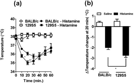 Histamine-induces enhanced hypothermia in 129S5 mice. a) Rectal temperature 0-60 minutes and (b). Maximal rectal temperature change at 30 minutes following i.v. injection of histamine (5 mg/200 μl saline). Data presented as means ± SEM (n = 6-8) and is representative of two separate experiments. Data were analyzed by one-way analysis of variance (ANOVA) and a post-hoc comparison test (Tukey-Kramer). (a) Single and double asterisks indicate a P value < 0.05 and < 0.01 compared with BALB/c + histamine. (b) Single asterisk indicate a P value less than < 0.05.