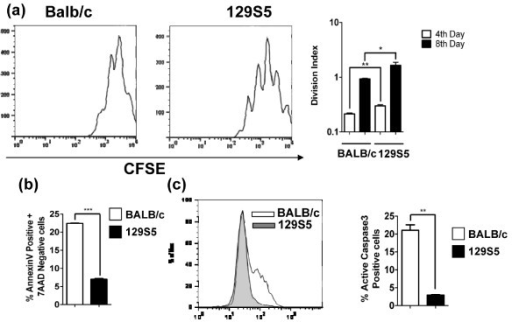 Increased proliferation and decreased caspase-3-mediated apoptosis in 129S5 BMMC. (a) Representative flow cytometry plot (day 8) of CFSE-labeled BALB/c and 129S5 BMMCs. Divisional index of 129S5 and BALB/c BMMCs cultured in IL3 (20ng/ml) and SCF (10ng/ml) and CFSE-fluoresence decay was measured on day 4 and day 8 and analyzed by proliferation tool of Flowjo software to determine division index. (b) Percentage of 7AAD- Annexin V+ and (c) active caspase-3+ 129S5 and BALB/c BMMCs (5-week old) cultured in IL-3 (20 ng/ml) and SCF (10 ng/ml). Data represent mean ± SEM and is representative of three separate experiments. (a) Data were analyzed by one-way analysis of variance (ANOVA) and a post-hoc comparison test (Tukey-Kramer). Single and double asterisks indicate a P value < 0.05 and < 0.01, respectively. (b and c) data were analyzed using a Students T-test. Double and triple asterisks indicate a P value < 0.01 and < 0.001, respectively.