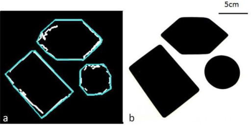 Visual comparison of the artificial sensor path (a) in white, reconstructed shape in blue and the target shapes (b).