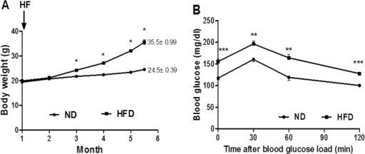 Body weight and metabolic status of mice were affected by HFD.HFD significantly altered the body weight (A), and induced glucose intolerance (B) in C57BL/6J mice. Black circle = Normal diet group, black squares = High-fat diet group. Data are mean ± SEM (n = 6), *p<0.05, **p<0.01, ***p<0.001.