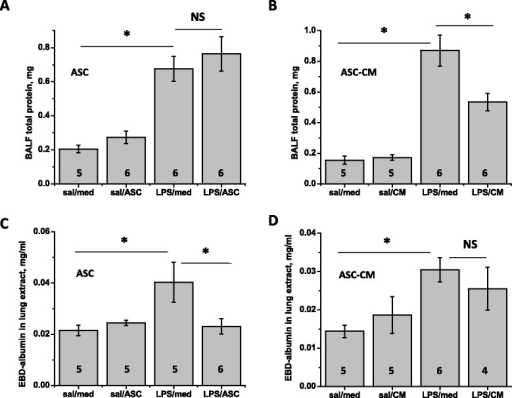 mASC and mASC-CM effect on epithelial and endothelial permeability. Protein in BALF collected 48 h post-injection was significantly reduced by mASC-CM (B), but not mASC (A). Conversely, EBD content in lung was significantly reduced by mASC (C), but not mASC-CM (D). One-way Anova with Tukey post-hoc was used to assess the significance of differences between the groups; number of animals is indicated.