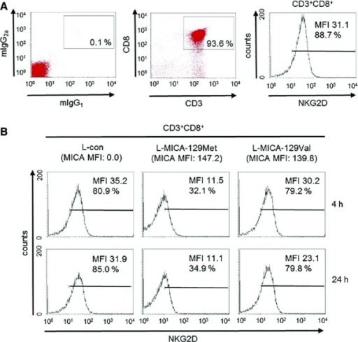 Down-regulation of NGK2D on CD8+ T cells in response to the MICA-129Met and MICA-129Val isoformsPurified CD8+ T cells were analyzed by flow cytometry for NKG2D expression as illustrated here. The MFI for NKG2D and the percentage of NKG2D+CD8+ T cells are indicated.The NK cells were subsequently co-cultured with an L-con, L-MICA-129Met, or L-MICA-129Val clone (the MFI values for MICA on these clones are indicated above the histograms in brackets). NKG2D expression was determined as illustrated in (A) after 4 and 24 h. The MFI for NKG2D and the percentages of NKG2D+CD8+ T cells are indicated.