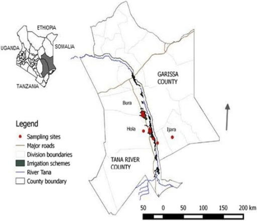 Bird trapping sites in Tana River County, Kenya