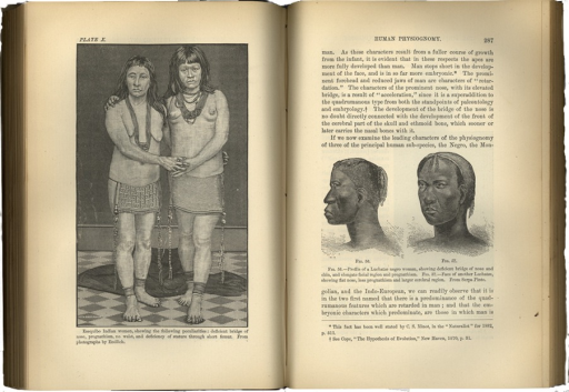<p>Two images on facing pages, comparing human body sizes and shapes. Image on right includes facial profiles of two black women.  Image on left gives whole body comparison between two young native Indian women. They are wearing ankle and neck native jewelry. Ornamentation falls from their waists to their ankles.</p>