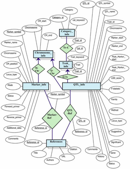 Entity relationship diagram of the integrated database open i entity relationship diagram of the integrated database the integrated database consists of two major publicscrutiny Image collections