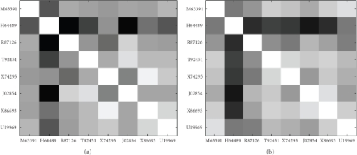 Images of the Pearson correlation coefficient matrices for the eight genes from colon dataset. (a) Normal samples. (b) Disease samples.