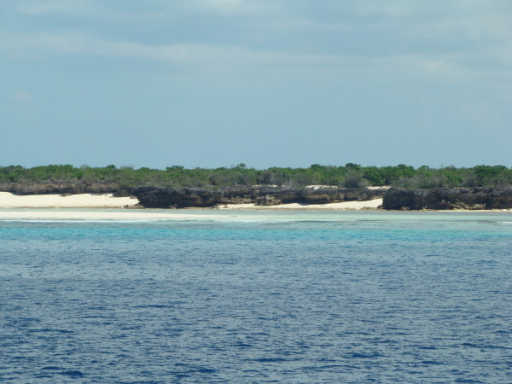 Photo of Aldabra Atoll, Island of Grande Terre. Note the low elevation of the coralline island rising just above sea level. The local peak is at 18 m a.s.l. (a sand dune) and the average altitude is between 2 and 3 m. (Photo V. Robert/IRD).