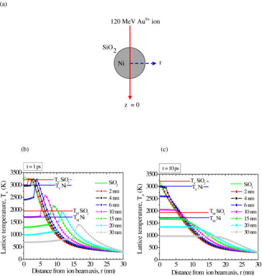 Simulations based on thermal spike model. (a) Schematic model for the thermal simulation of a Ni particle embedded in the SiO2 matrix irradiated by 120 MeV Au+9 ion. (b) Calculated radial profile of lattice temperature in the z = 0 plane of bulk SiO2 and seven different spherical Ni nanoparticles (2, 4, 6, 10, 15, 20, 30 nm) embedded in silica after 1 ps and (c) 10 ps of ion impact. The melting (TM) and vaporization (TV) temperature of SiO2 and Ni are also indicated