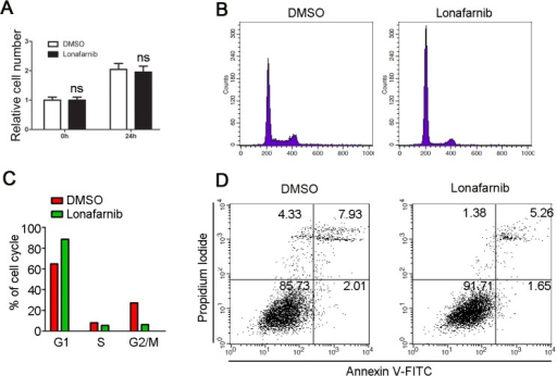 The effect of lonafarnib on the proliferation of endothelial cells.(A) HUVECs were treated with DMSO or 10μM lonafarnib for 24 hours, and SRB assay was performed to measure cell proliferation. (B)HUVECs were treated with DMSO or 10μM lonafarnib for 24 hours, stained with the DNA dye DAPI and cell cycle progression was examined by flow cytometric analysis of cellular DNA content. The amplitude of curves corresponds to the cell number. The peak on the left represents cells in G1 phase of cell cycle, while the right peak represents cells in G2/M phase. (C) Experiments were performed as in (B), and the percentage of cells in G1, S, and G2/M phases was analyzed. (D) HUVECs were treated with DMSO or 10μM lonafarnib for 24 hours, and cell death was evaluated by Annexin V/PI- staining assay.