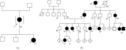 Genetic family trees of case 1 (a) and case 2 (b). The continuous black arrows indicate the mothers and the dotted black arrows indicate the daughters.