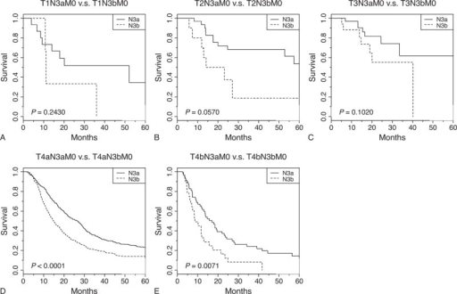 Survival analysis of patients with gastric cancer undergoing curative intent surgery, in which N3a and N3b statuses are compared in terms of different T stages. (A) T1N3a versus T1N3b, (B) T2N3a versus T2N3b, (C) T3N3a versus T3N3b, (D) T4aN3a versus T4aN3b, and (E) T4bN3a versus T4bN3b. The P values for the survival comparison were determined by the log-rank test.
