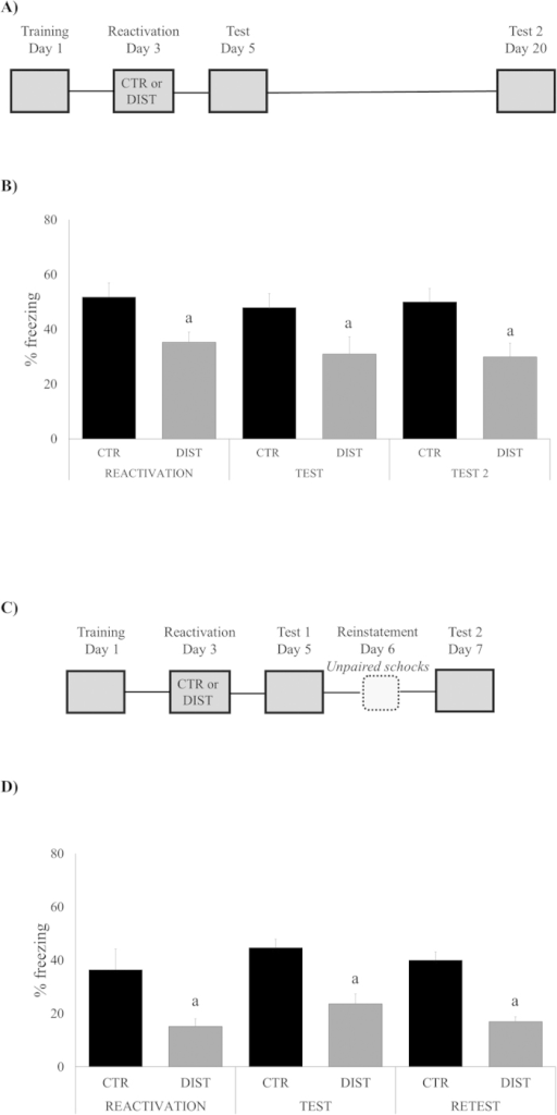 Memory reactivation in the presence of a distractor disrupts fear memory expression in a long-lasting way.(A) Schematic representation of the behavioral procedures: rats were re-exposed to the fear conditioning context without the US (shock) 48 h after training (reactivation session); all groups were tested on day 5, and retested on day 20, in this same context. (B) Percent of freezing time during reactivation, test and retest sessions expressed as mean ± S.E.M. (CTR – Controls, N = 12 or DIST – Distractor, N = 11). (a) significantly different from respective control group (P < 0.05; effect of groups, ANOVA for Repeated Measures). (C) Schematic representation of the behavioral procedures: rats were re-exposed to the fear conditioning context without the US (shock) 48h after training (reactivation session); all groups were tested on day 5, exposed to unconditioned stimulus (reinstatement session) on day 6, and retest on day 7. (D) Percent of freezing time during reactivation, test and retest sessions expressed as mean ± S.E.M. (CTR – Controls, N = 10 or DIST – Distractor, N = 8). (a) significantly different from respective control group (P < 0.05; effect of groups, ANOVA for Repeated Measures).