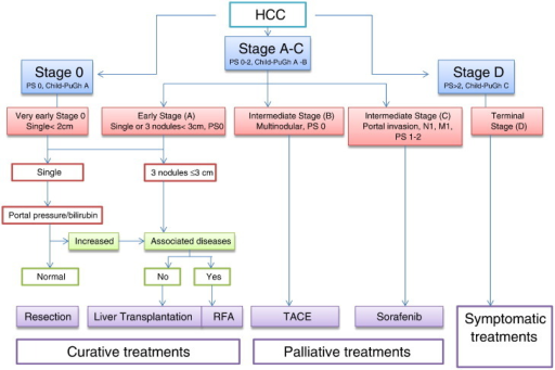 The BCLC staging system for HCC. M, metastasis; N, node; PS, performance status; RFA, radiofrequency ablation.