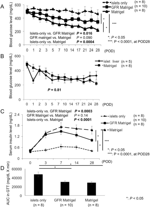 Changes in the blood glucose concentrations, serum insulin level, and IPGTT following transplantation.Transplantation outcomes were evaluated by the measurement of BG and serum insulin levels and GTTs. (A) BG levels were significantly improved in islets embedded in ECM (both Matrigel and GFR Matrigel groups) compared with the islets-only group. BG levels were significantly lower in the Matrigel group compared with the GFR Matrigel group at POD 28. (B) Comparison of changes in blood glucose concentrations between intramuscular transplantation in the Matrigel group and the intraportal transplantation group. No significant differences were observed in changes in blood glucose concentration between intramuscular transplantation in the Matrigel group and the intrahepatic transplantation group. (C) Serum insulin levels were significantly increased in the GFR Matrigel and Matrigel groups compared with the islets-only group, and levels in the Matrigel were significantly higher than those in the GFR Matrigel group at POD 28. (D) IPGTT AUC values in both the GFR Matrigel and Matrigel groups were significantly lower than those in the islets-only group. AUC, area under the curve; BG, blood glucose; ECM, extracellular matrix; GFR, growth factor reduced; GTT, glucose tolerance test; IPGTT, intraperitoneal glucose tolerance test; POD, postoperative day.