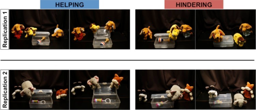 Helping and hindering trials in Studies 1 and 2.Pictures on the left of each panel show the protagonist trying to open the box. Pictures on the right of each panel show a helping or a hindering event.