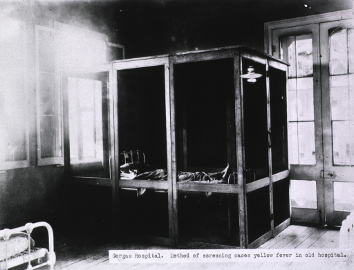 <p>Yellow fever patient in a screened cubicle in the old hospital.</p>