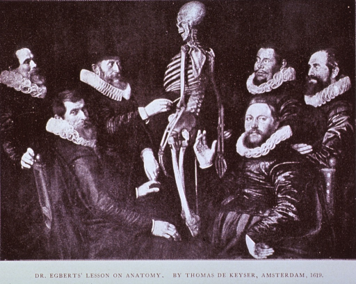 <p>Group of physicians are examining a skeleton.</p>